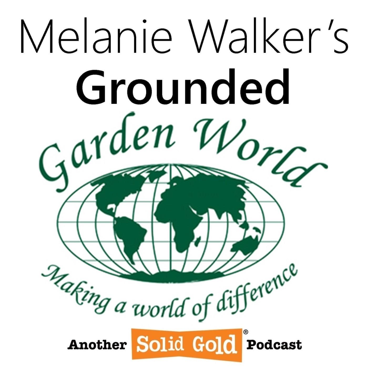 Spring is around the corner! | JJ van Rensburg (Garden World General Manager)